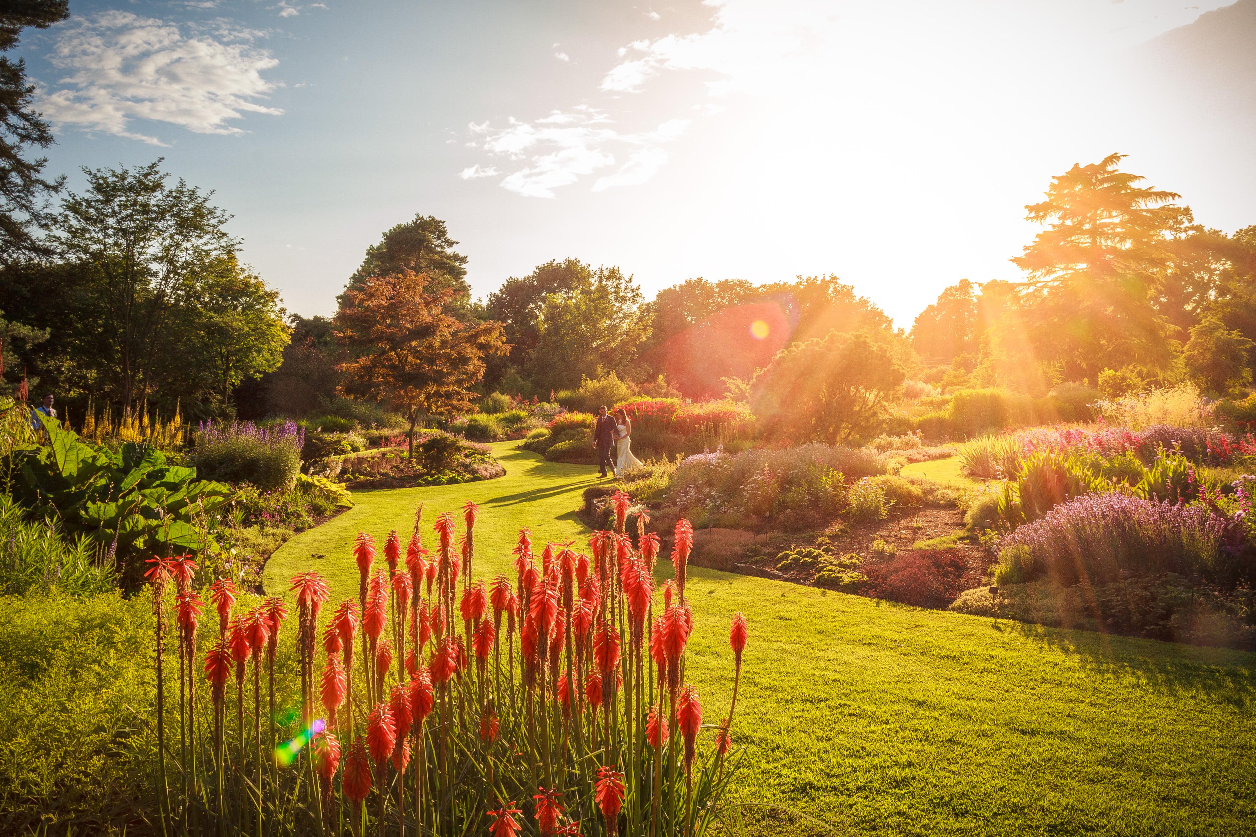 Bressingham Gardens
